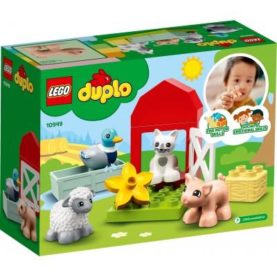 LEGO 71023 - KITTY POP